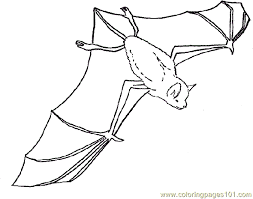Small Picture Bat Coloring 14 Coloring Page Free Bat Coloring Pages