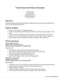 Free Resume Templates For Windows Vista Resume Resume Examples