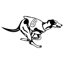 Small Picture Popular Greyhound Racing Buy Cheap Greyhound Racing lots from