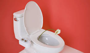 I Tried The Tushy Bidet u0026 Am Shocked To Say It Actually Changed My Life