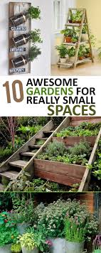Small Picture 100 best Small Space Gardens images on Pinterest Small space