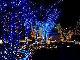 Blue White Outdoor Christmas Lights Fresco Of Blue And White Christmas Lights Blue Christmas