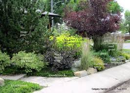 Small Picture Calgary Garden Coach garden design for sustainable and kid