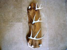 Antler Coat Rack Clearance Coat Rack Welcome To Our Site In Antler Coat Racks Antler Coat Racks 33