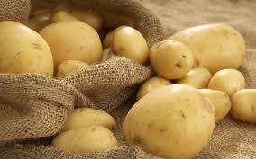 cute potato wallpaper.  Cute HD Wallpaper  Background Image ID420163 And Cute Potato E