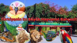 Gaziantep Hayvanat Bahçesi - Gaziantep Zoo (Türkiye'nin En Büyük Hayvanat  Bahçesi) - YouTube