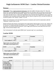 Single Inclinometer Rom Chart Lumbar Flexion Extension Doc