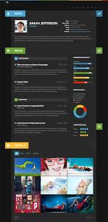 15 Best Wordpress Resume Themes 2017 Smashthemes