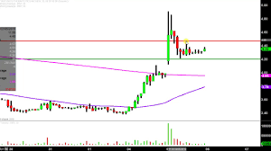 Insys Therapeutics Inc Insy Stock Chart Technical