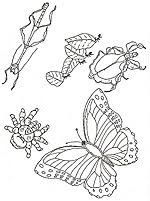 Small Picture Coloring Page Butterflies for our tree Pinterest Coloring
