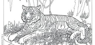 Coloring Pages Difficult Printable Kontaktimproorg