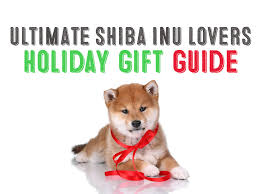 ultimate shiba inu gift giving guide