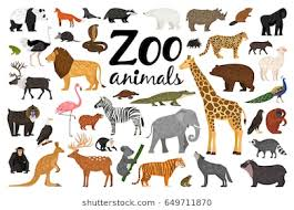 animals in zoo pictures. Brilliant Animals Zoo Animals Collection In Animals Pictures Shutterstock