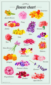Flower Chart Sugar And Charms Edible Flower Chart Sugar And Charm