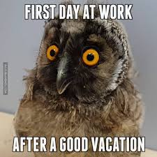 first day at work after a good vacation watch or first day at work after a good vacation watch or net