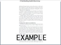 Leadership Essays Examples Essay Biography School Essay Biography