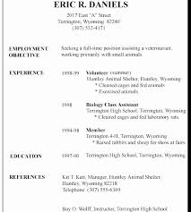 Example Of Resume For A Job New Sample Resume For Job Application Doc Elegant Job Description Format