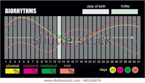 Free Biorhythm Chart Biorhythms Vector Flow Chart Infographics Element Stock