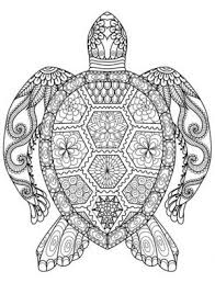 Small Picture Summer Coloring Pages Adults Coloring Pages