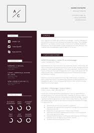 Impressive Resume Templates 24 Slick And Highly Professional CV Templates Guru 18