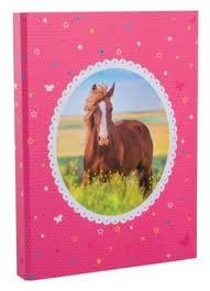 Goldbuch Heftbox 3d Pferdeliebe A4 Bcb Sa