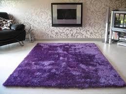 purple rug67 purple