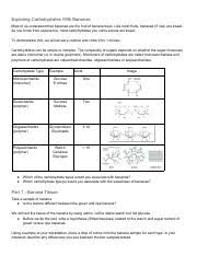 Banana Carbohydrate Lab Pdf Exploring Carbohydrates With