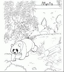 Small Picture wonderful panda bear coloring pages printable with panda bear