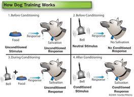 Example Of Classical Conditioning Nurture Classical Conditioning Feral Chidren