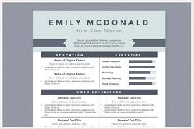 Best Professional Resume Template Gorgeous Modern Resume Templates Docx To Make Recruiters Awe