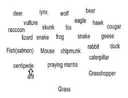 Predator Chart Prey Predator Chart