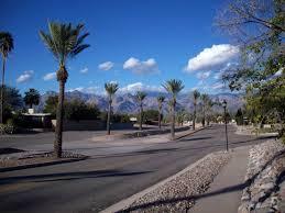 Desert Design Center Tucson Desert Palms Park Wikipedia