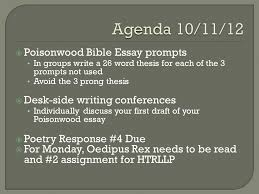 journals terms exit surveys and daily agenda  say mean matter  10  poisonwood bible essay