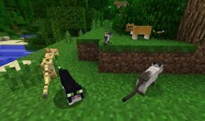 tame baby ocelot minecraft. Fine Tame Minecraft Mobs Ocelot With Tame Baby