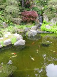 Japanese Garden Theme Japanese Garden Theme Awesome Chick Japanese Garden Party Theme
