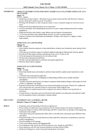 Java Developer Resume Example Associate Java Developer Resume Samples Velvet Jobs 4