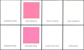 Pink Paint Colors Docklifemarine Co