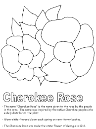 Small Picture Cherokee Rose coloring page