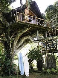 Tree House Retreat  Amazing AccomTreehouse Accommodation Nsw