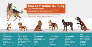Service Dog Vest Size Chart Emotional Companion Dog Vest Goldenacresdogs Com
