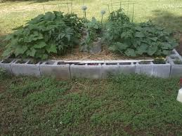 cinder block gardening ideas tips on using cinder blocks for garden beds