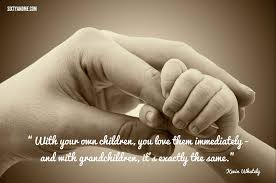 Quotes About Grandchildren Magnificent Grandchildren Quotes