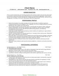 B2b Sales Resumes Excellent B2b Sales Resume Examples Objectives Fieldstatio 8879