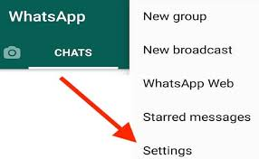 Open WhatsApp Settings menu and tap on it