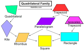 Quadrilateral Properties Chart Answers Quadrilateral Family Properties Mathbitsnotebook Geo