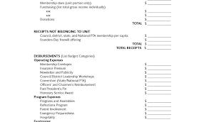 Sample Non Profit Budget Non Profit Budget Template Issue Concept ...