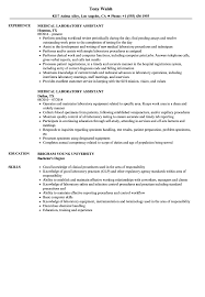 medical laboratory assistant resume medical laboratory assistant resume samples velvet jobs