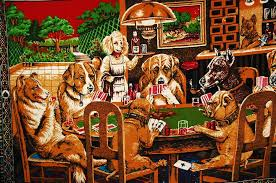 dogs playing pool google search