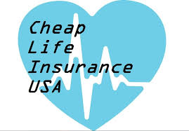 life insurance quotes usa captivating how to life insurance usa insurance quotes ed