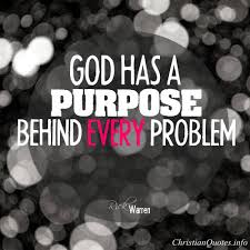 Christian Quotes On Purpose Best of Rick Warren Quote God's Purpose ChristianQuotes